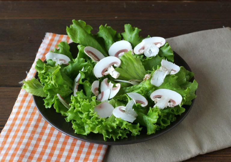 Lavate la lattuga, tagliatela, e appoggiatela su quattro piatti,