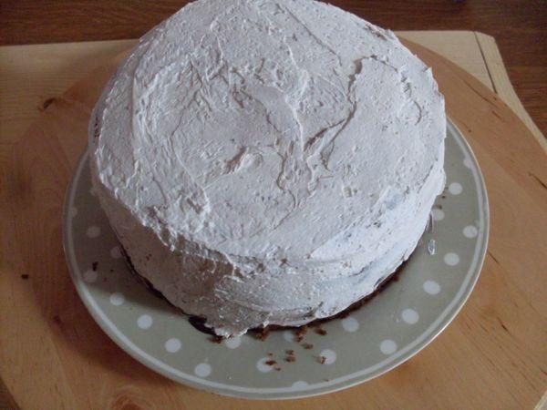 Trascorso il tempo necessatio levare il cerchio apribile e mettere un veloo di panna montata attoro alla torta