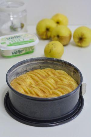 sistemare le mele e ricoprire con zucchero di canna.
