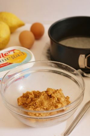Amalgamare ai biscotti secchi, Vallé Omega 3 fino a quando il composto non è compatto