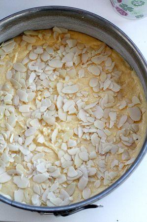 Ungere e infarinare una teglia di 20 cm di diametro e versare l'impasto, cospargendolo di scaglie di mandorle e un cucchiaio di zucchero (anche di canna)