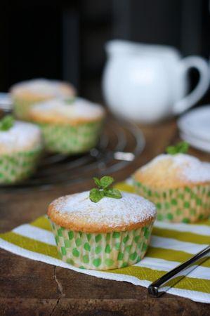 servire con abbondante zucchero a velo e decorare con qualche foglia di menta.