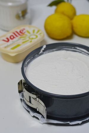 aggiungere al composto il succo di limone, la scorza di limone e lo zenzero e versare il tutto nello stampo