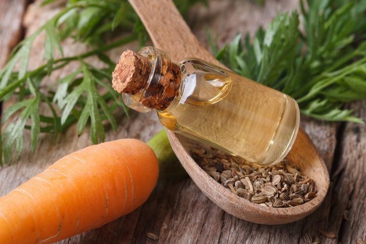 Olio di carote