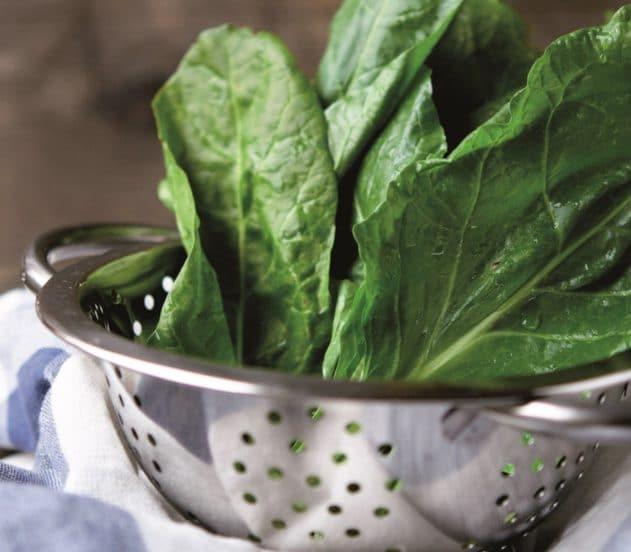 Rotolo salato con erbette e sgombro 1