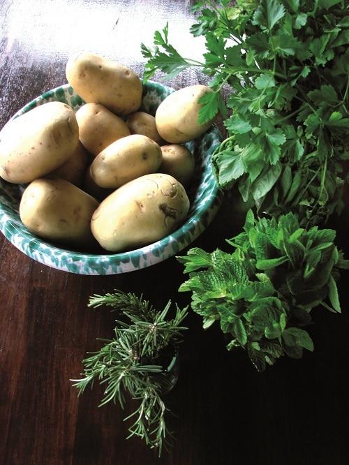 Accendere il forno a 200° e foderare una teglia<br /> con carta da forno. Pelare e grattugiare le patate,<br /> prima di porle sul fondo della teglia. Salare, pepare e irrorare con un filo di olio.