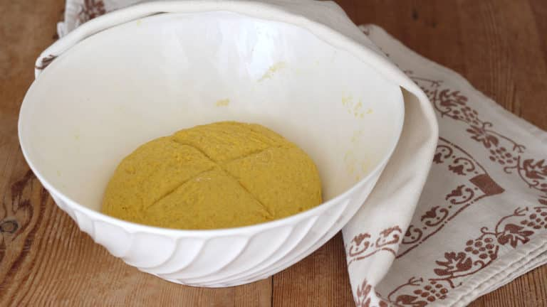 Continuate ad impastare fino a formare un impasto liscio e omogeneo, praticate un taglio a croce, coprite la ciotola con un canovaccio pulito e lasciate lievitare in luogo riparato (ad esempio nel forno spento) fino a quando l'impasto raddoppia di volume (circa 3 ore)