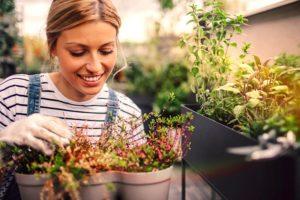 orto in casa ragazza con piante